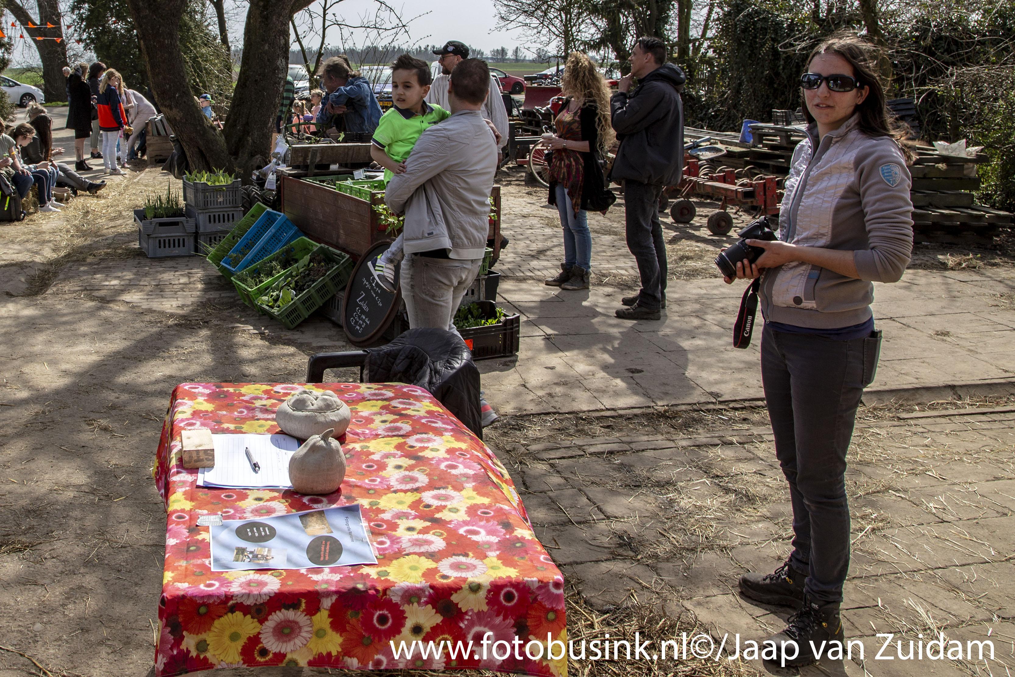 Lammertjesdag bij Zorgboerderij de Zuidpunt in Dordrecht