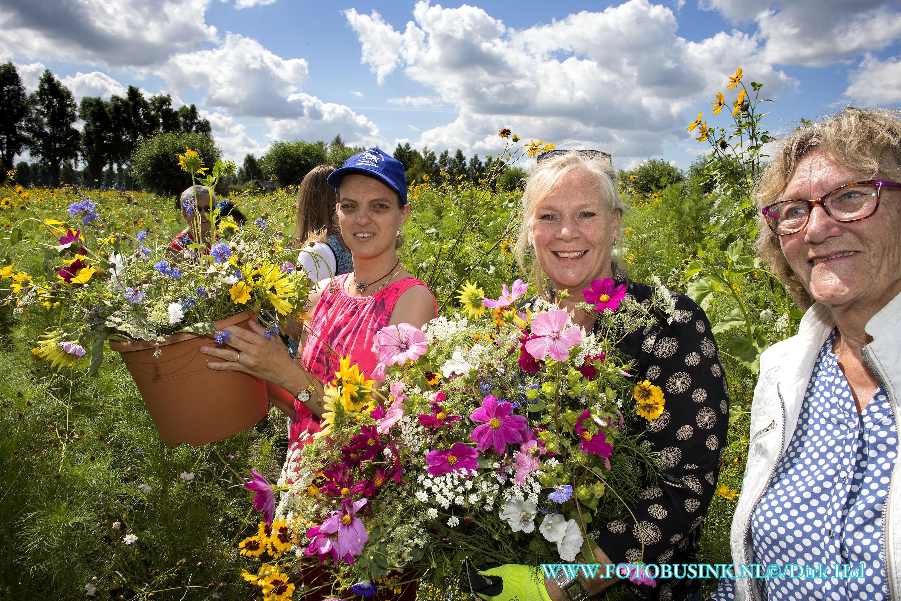 Prachtige bloemen plukken bij de watertoren in Dubbeldam.