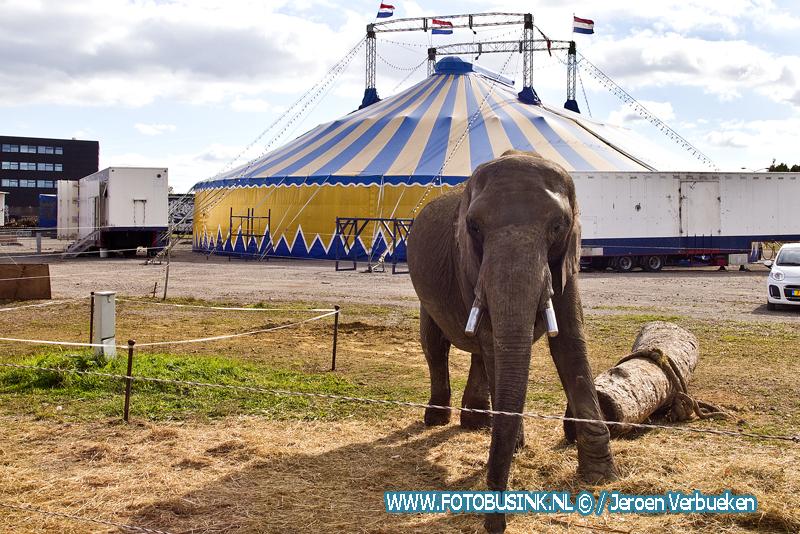 Circus Freiwald in Dordrecht.