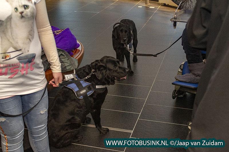Toegangsstickers geleide- en hulphonden in het Stadskantoor