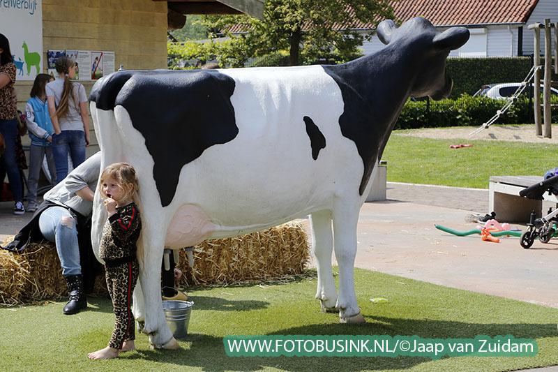 Schaapscheerdersfeest op kinderboerderij Papenhoeve