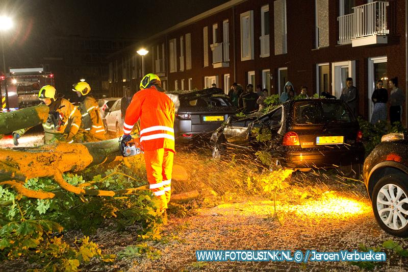 Boom verwoest twee auto's aan het Wiardi Beckmanplantsoen in Dordrecht.
