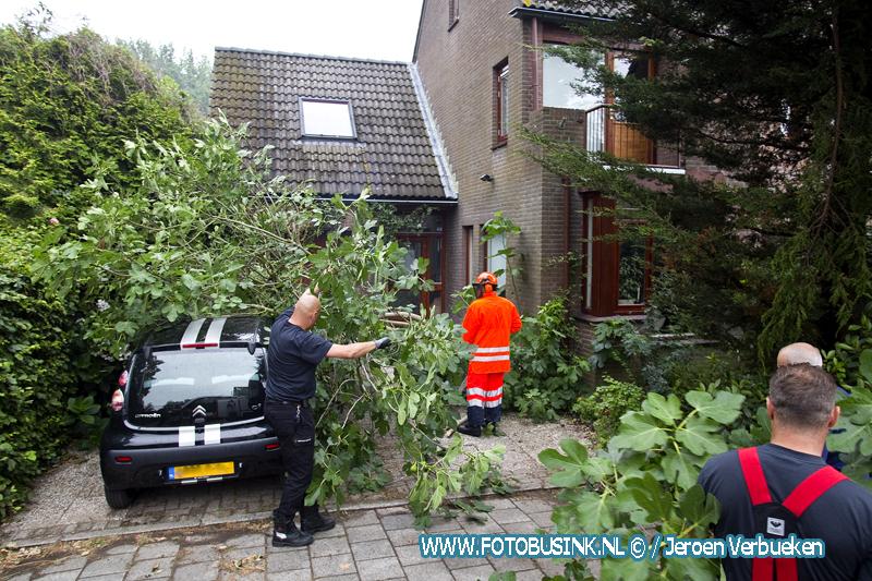 Vijgenboom valt op auto na blikseminslag aan de Arkelstein in Dordrecht.
