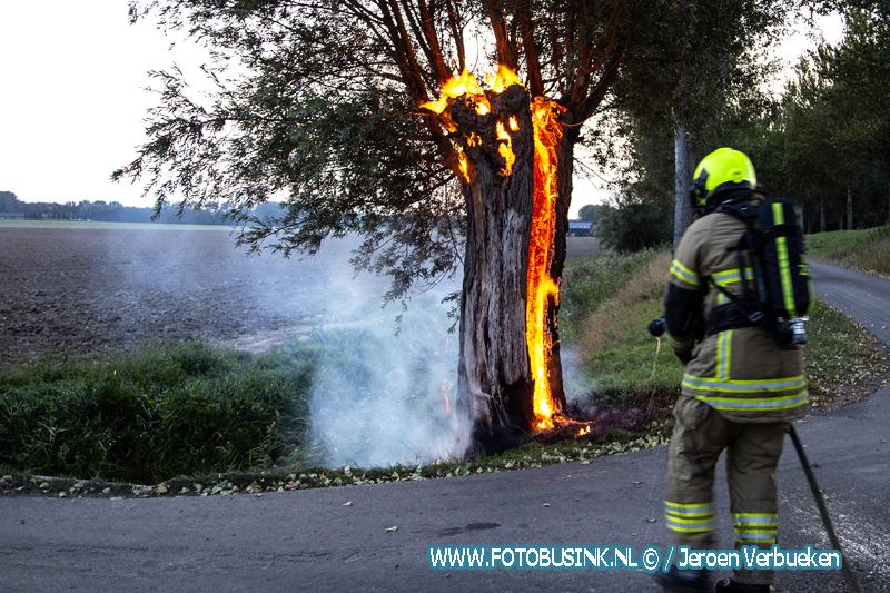 Boom in de brand aan de zuidendijk in Dordrecht.