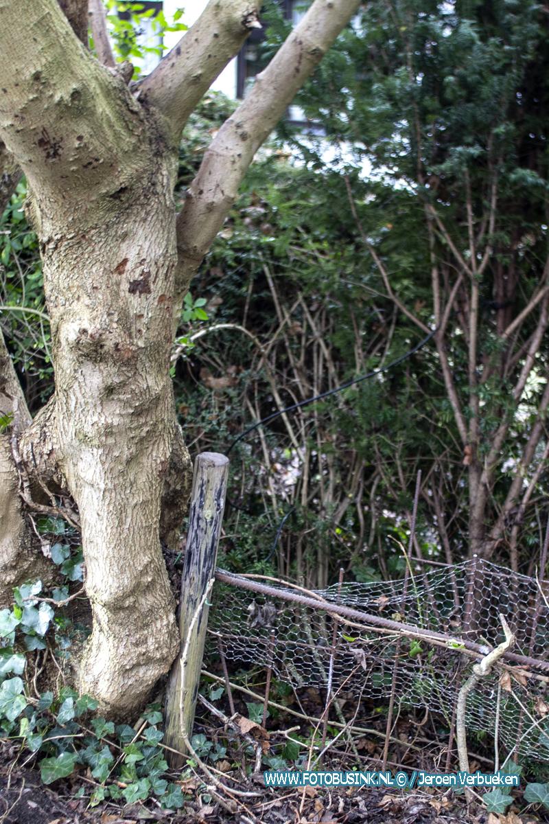 Jongetje valt uit boom en valt met been op pinnen van hek.